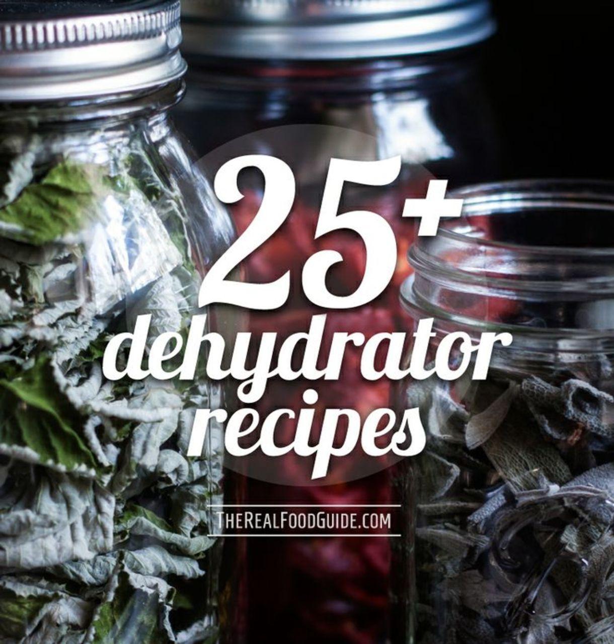 sedona raw food dehydrator manual