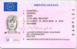 driving manual on fully automatic license victoria