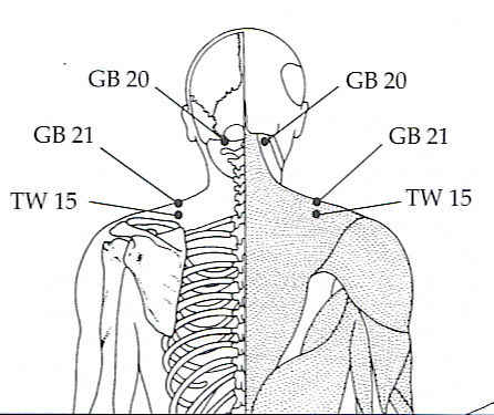 manual of acupuncture deadman free download